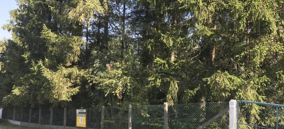 LE ROUX (Fosses-la-Ville),très beau terrain dans endroit calme